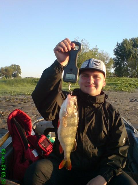 "Митяй со свиноокунем на 780 грамм, рыбалка в июле на Банном и Харабалыке, база ""Ахтуба-клуб"""