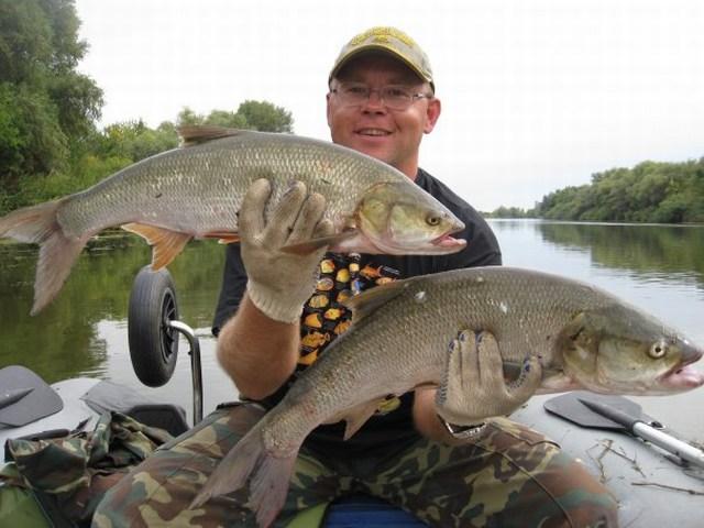 рыбалка в нерест на ахтубе