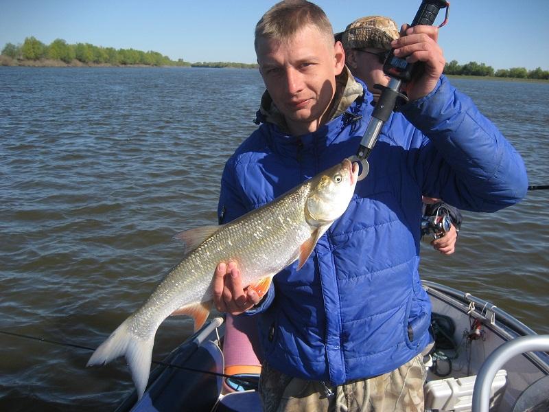 Рыбалка на митинке нижняя волга