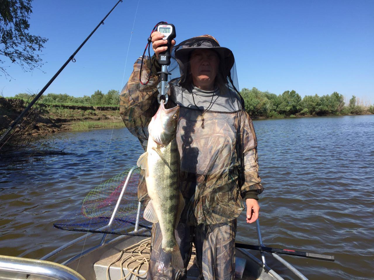 Рыбалка в Астрахани Весной базы, цены на отдых.