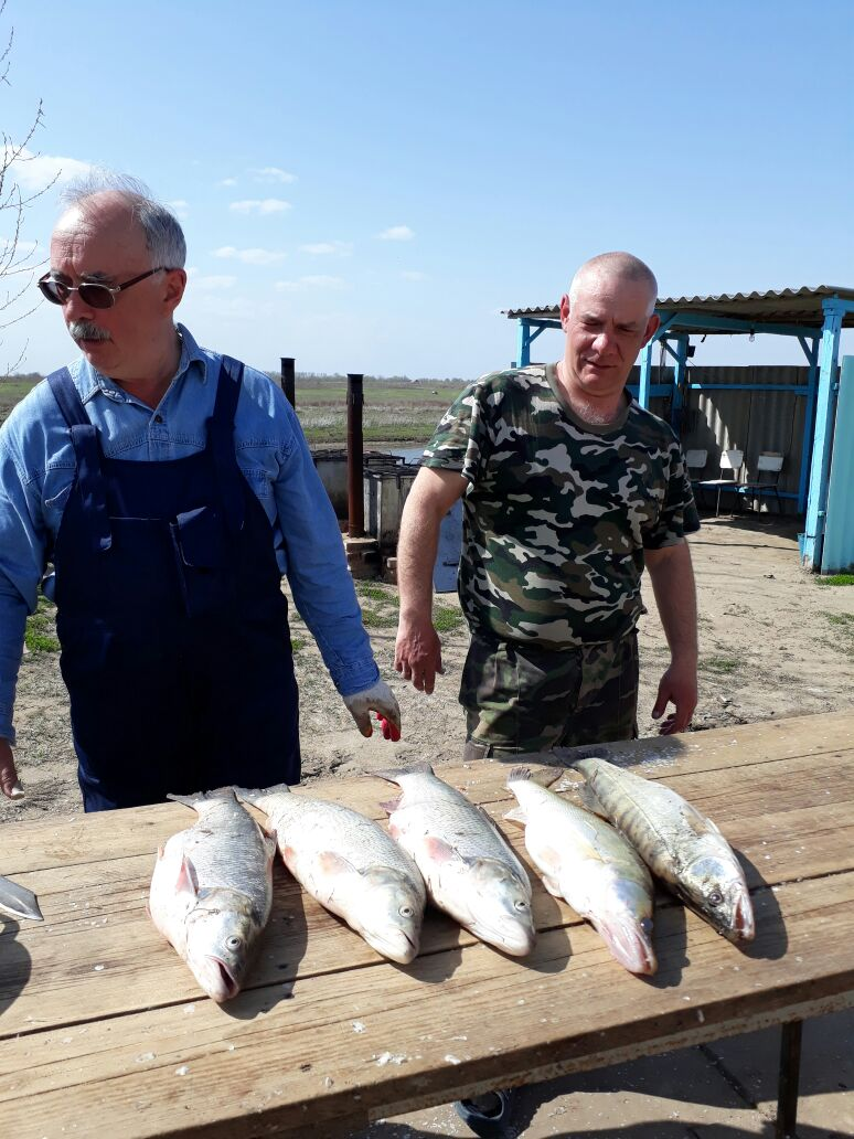 Харабали селитренное рыбалка без границ